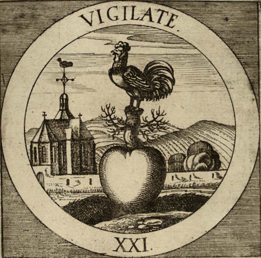 emblem-21b