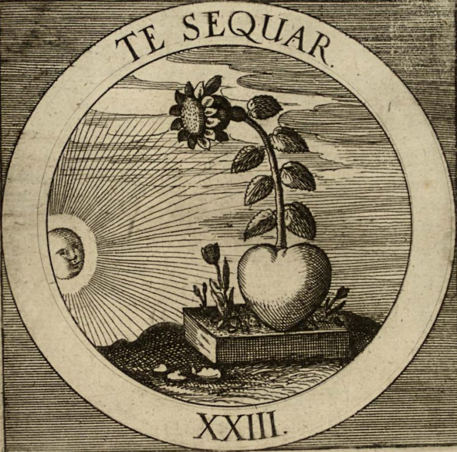 emblem-23b