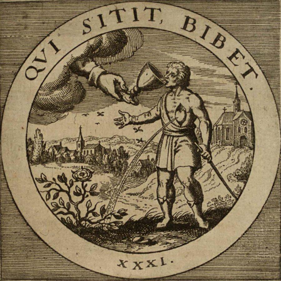 emblem-31