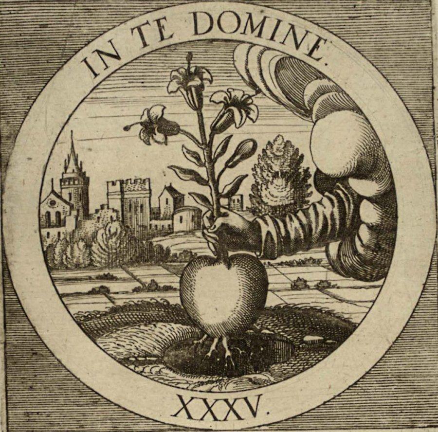 emblem-35b