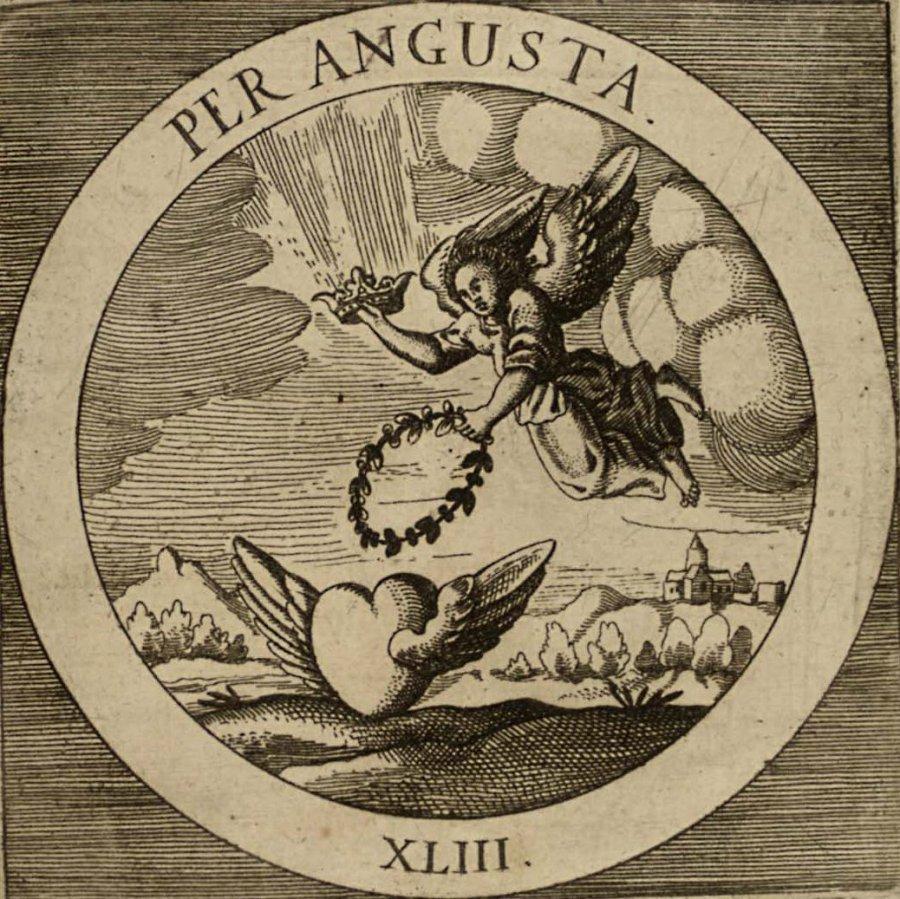 emblem-43