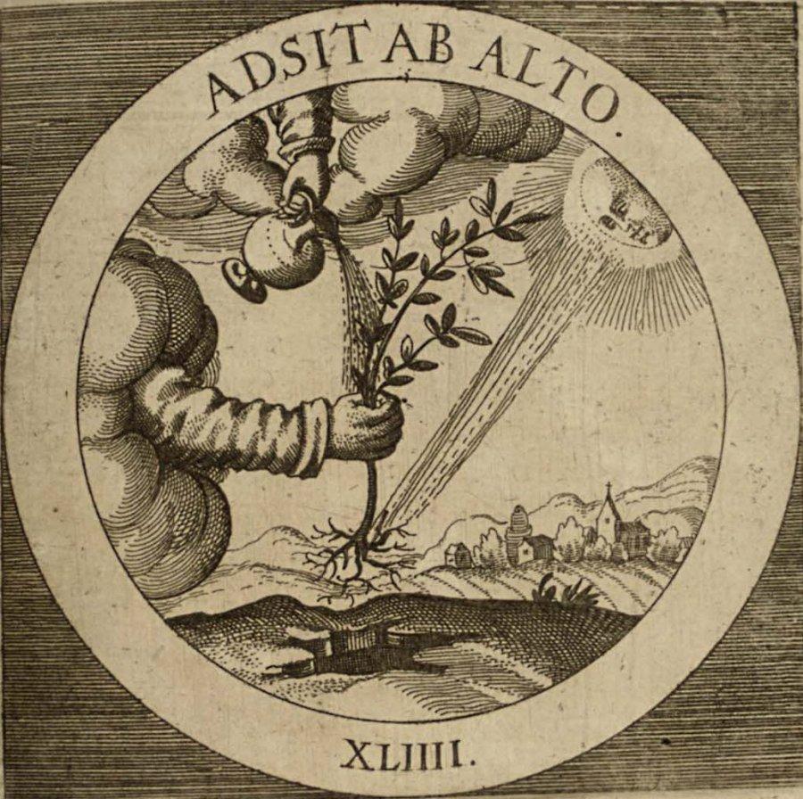 emblem-44